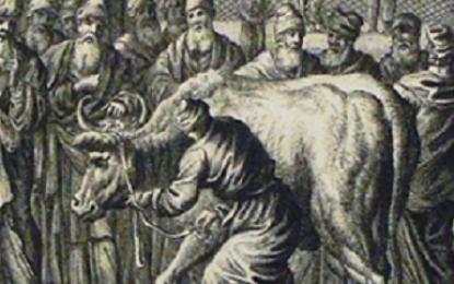 פרשת חוקת סודות הפרה האדומה