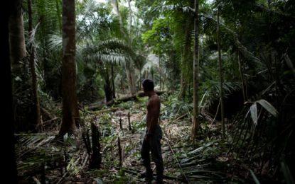 הקרב על האמזונס: כורים חמושים השתלטו על כפר של ילידים