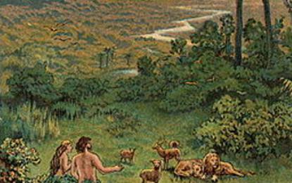 פרשת בראשית