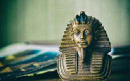 על המכות – פרשת וארא